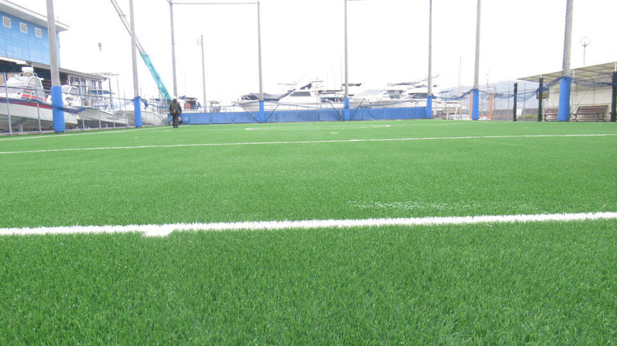 芝の張り替え4日目2.JPG
